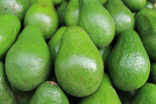 avocado healthy fats